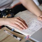Je vysokoškolské vzdelanie dôležité v dnešnej dobe?