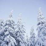 Ako ostať zdravá počas zimných mesiacov